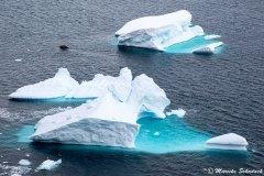 antarctic-peninsula_06