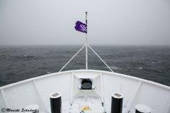 antarctic-peninsula_07