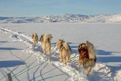 Tiniteqilaaq ist in Sicht. Foto: Dr. Till Pasquay