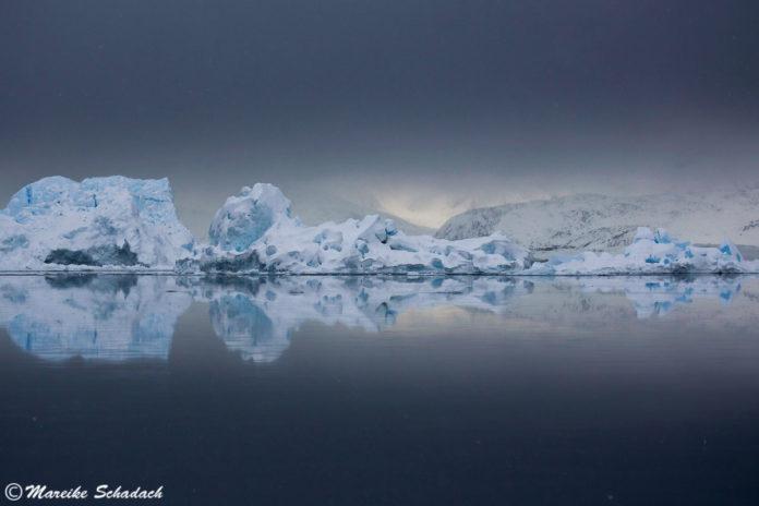 Grönland im Winter