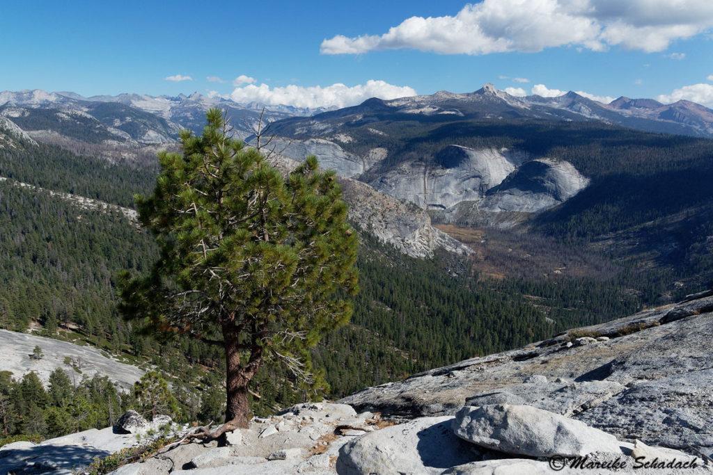 Aussicht vom Gipfel des Half Dome
