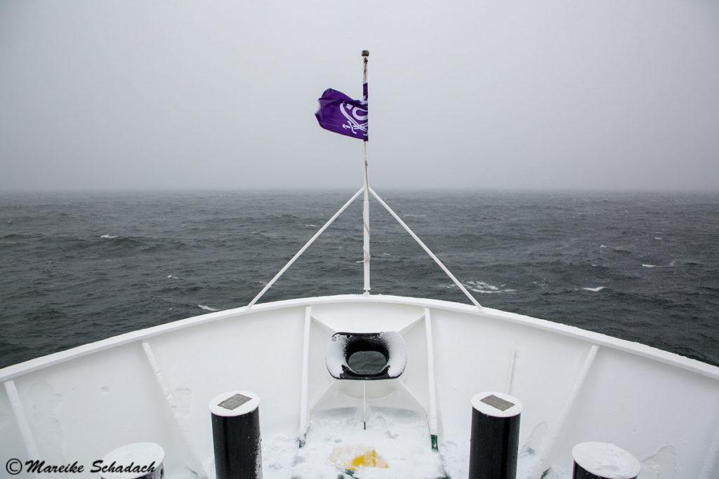 Antarctic Circle voraus - 66°33'44'' südliche Breite