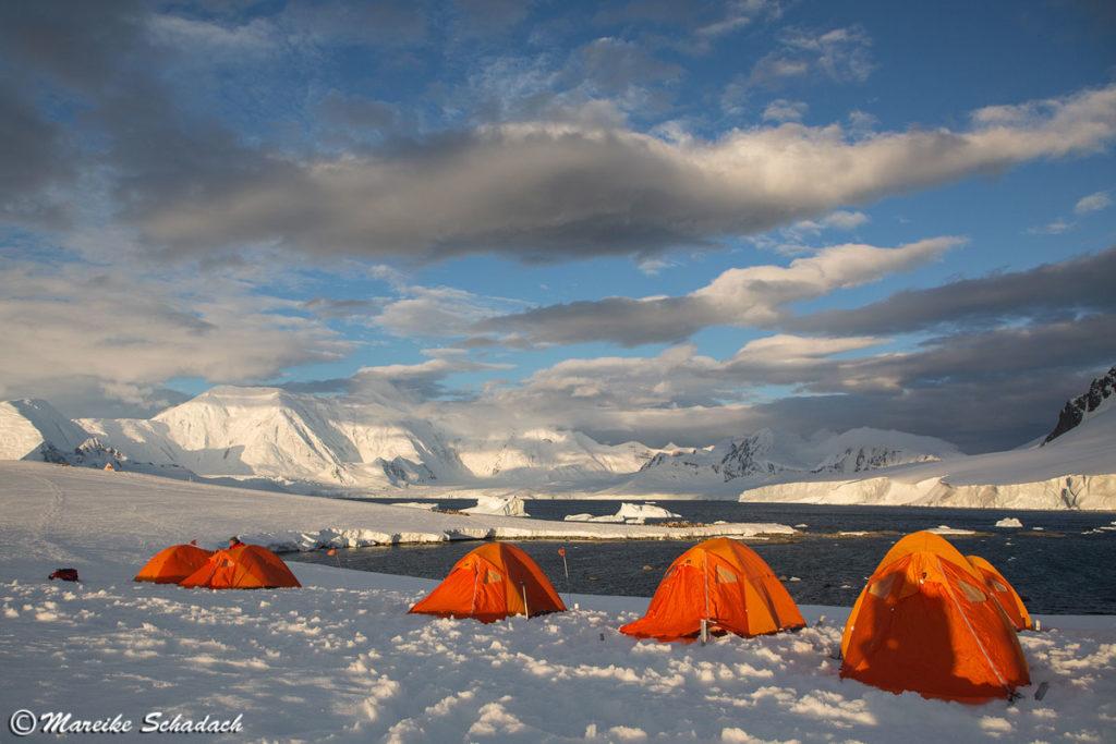 Camping in der Antarktis, Damoy Point