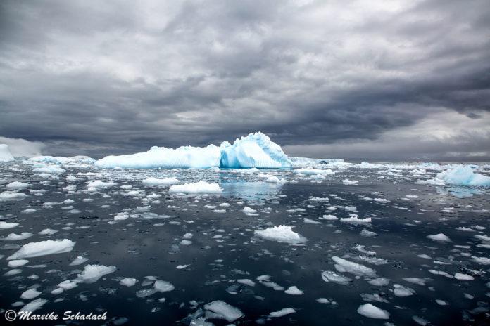 Antarktis - die besten Tipps für die Reise
