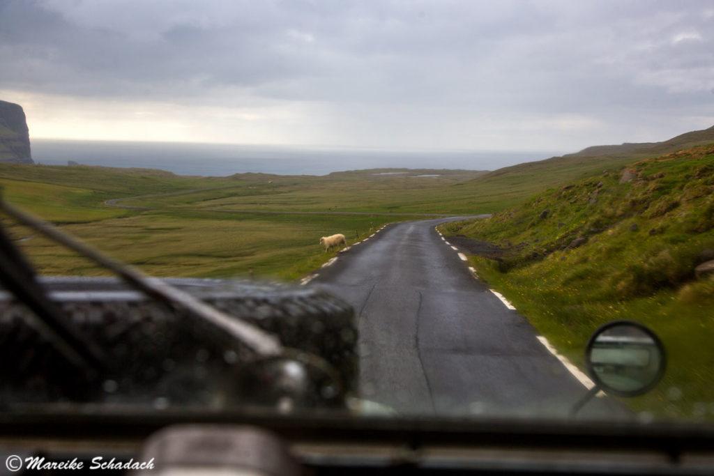 Roadtrip mit Land Rover Serie II auf den Färöer-Inseln