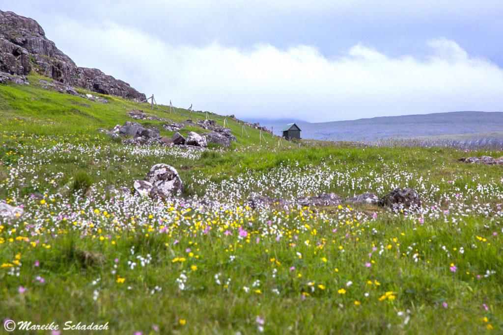 Esturoy, Färöer Inseln