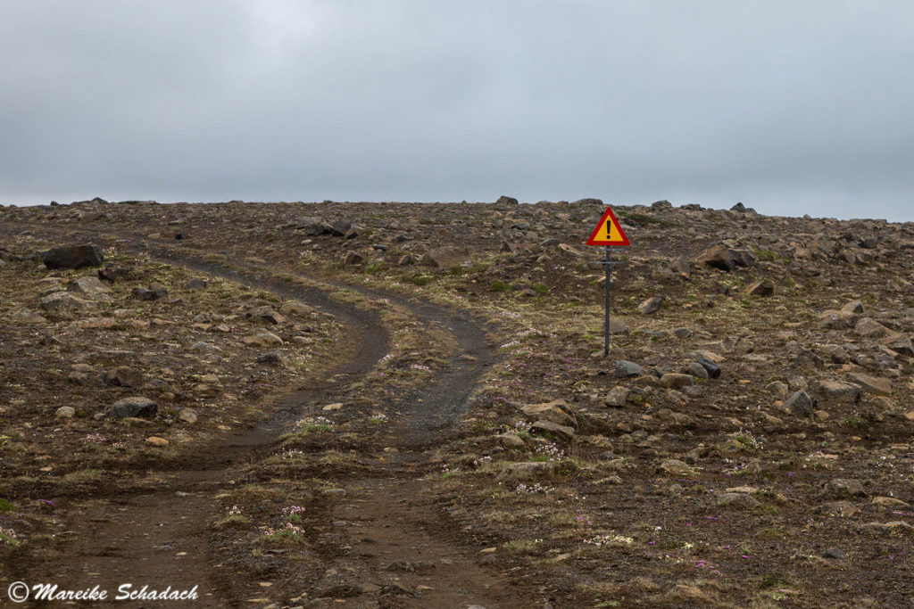 Roadtrip in Islands Hochland