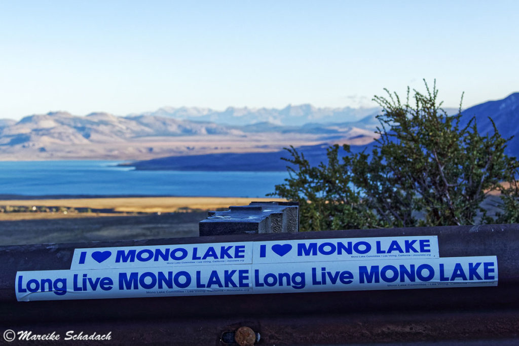 Long Live Mono Lake, Mono Lake Viewpoint