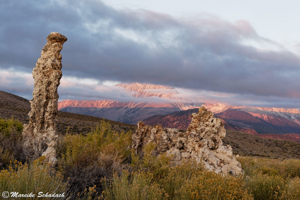 Mono Lake Fototipp für Kalkstein-Gebilde