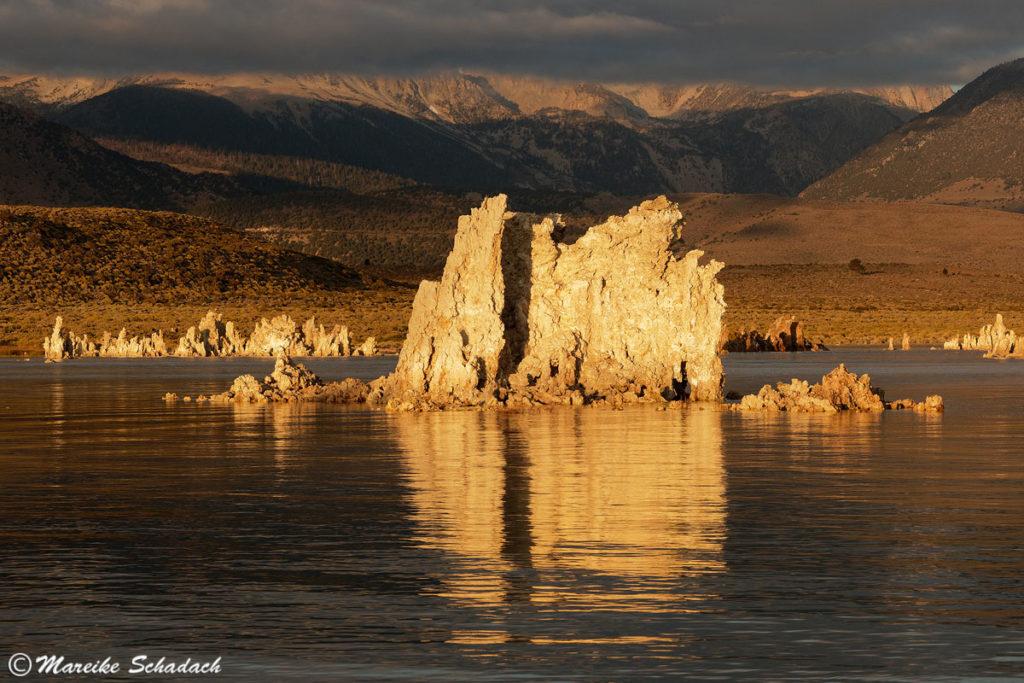 Mystische Stimmung im Morgenlicht am Mono Lake