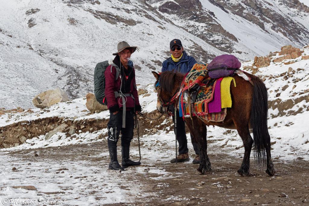 Notfall-Pferd während unseres Trekking um den Kailash