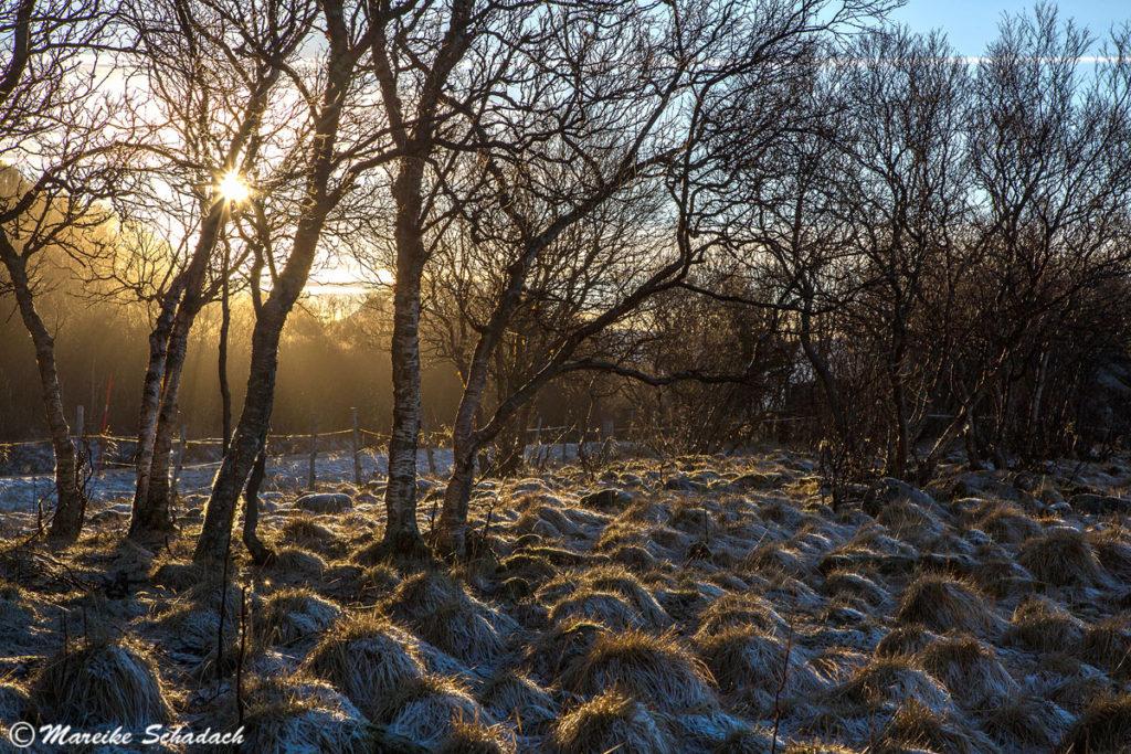 Morgenlicht, Vesterålen in Norwegen