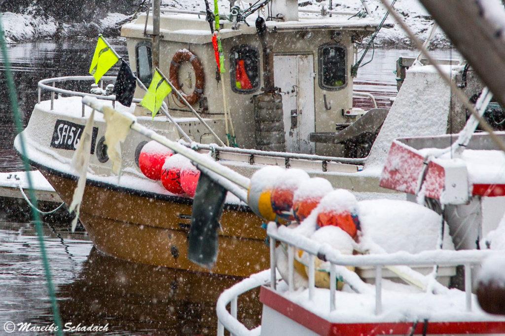 Fischerboote in Henningsvær