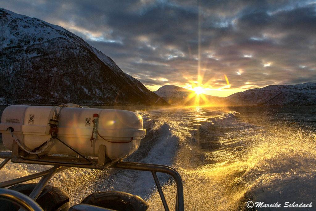 Bootsfahrt bei Lauklines, Norwegen