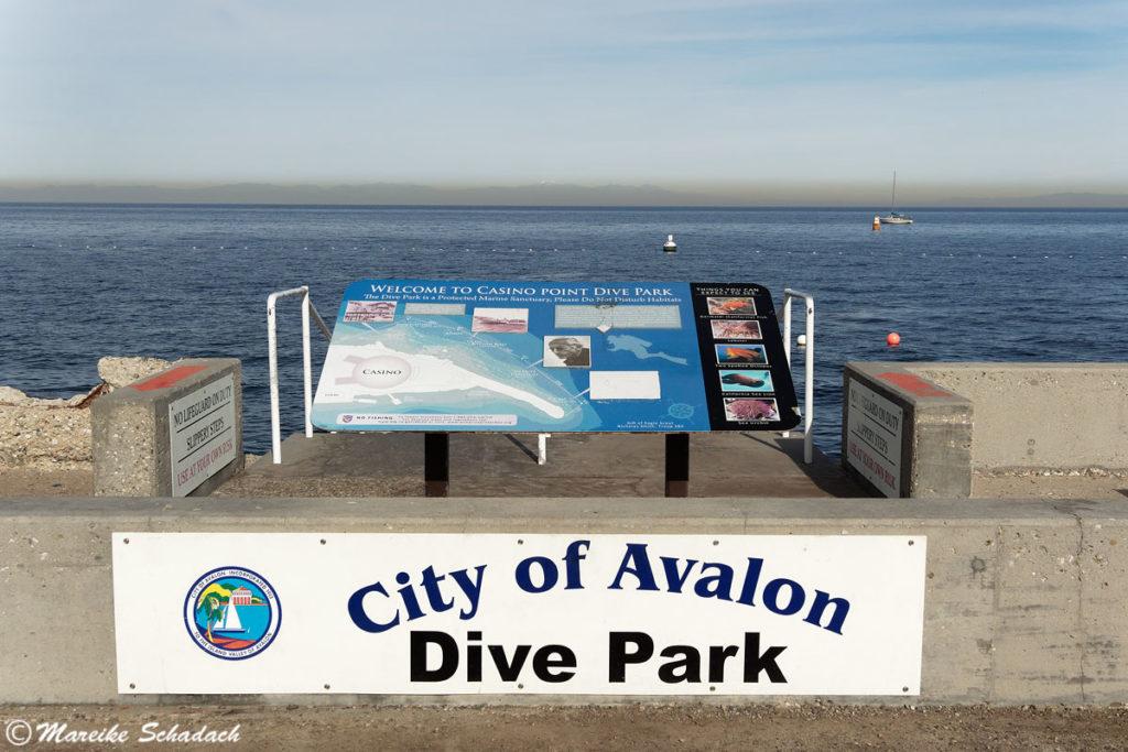 Topp-Tipp für Catalina Island: Tauchen im Casino Dive Park