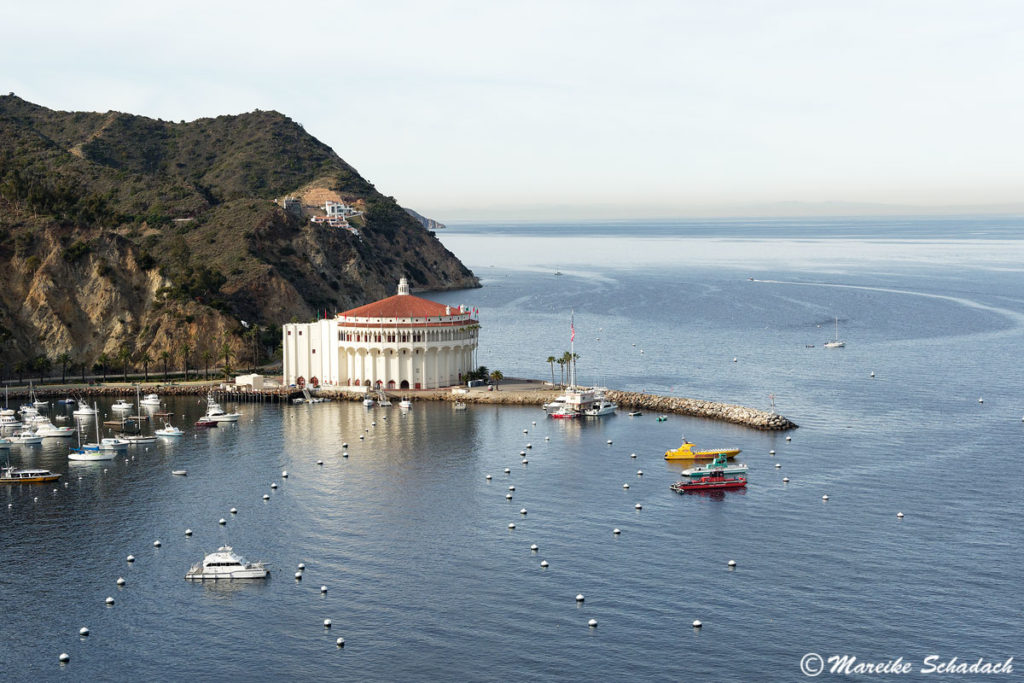 Santa Catalina Island – Reisebericht, Tipps und Highlights