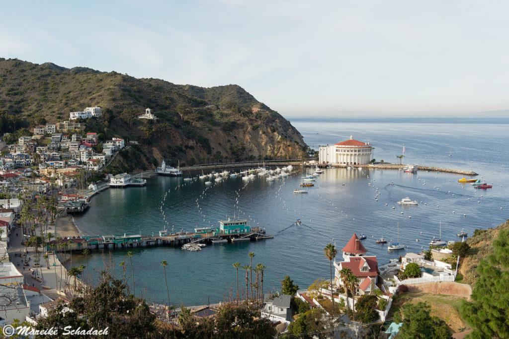 Foto-Tipp: die schönste Aussicht auf Avalon