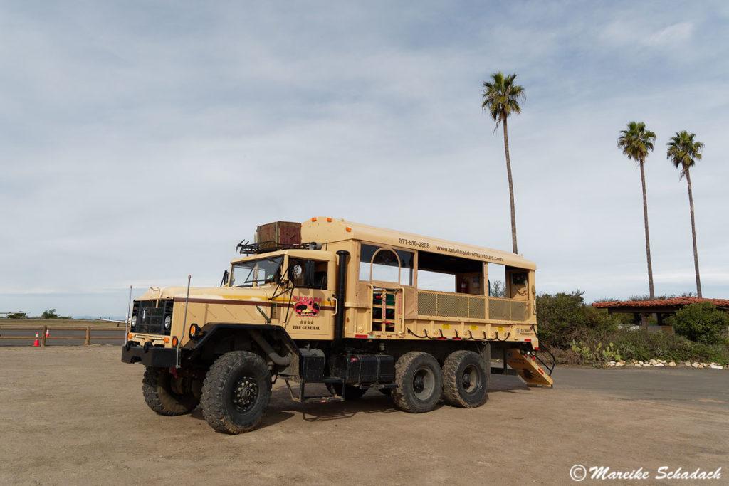 Safari im Inneren von Catalina Island