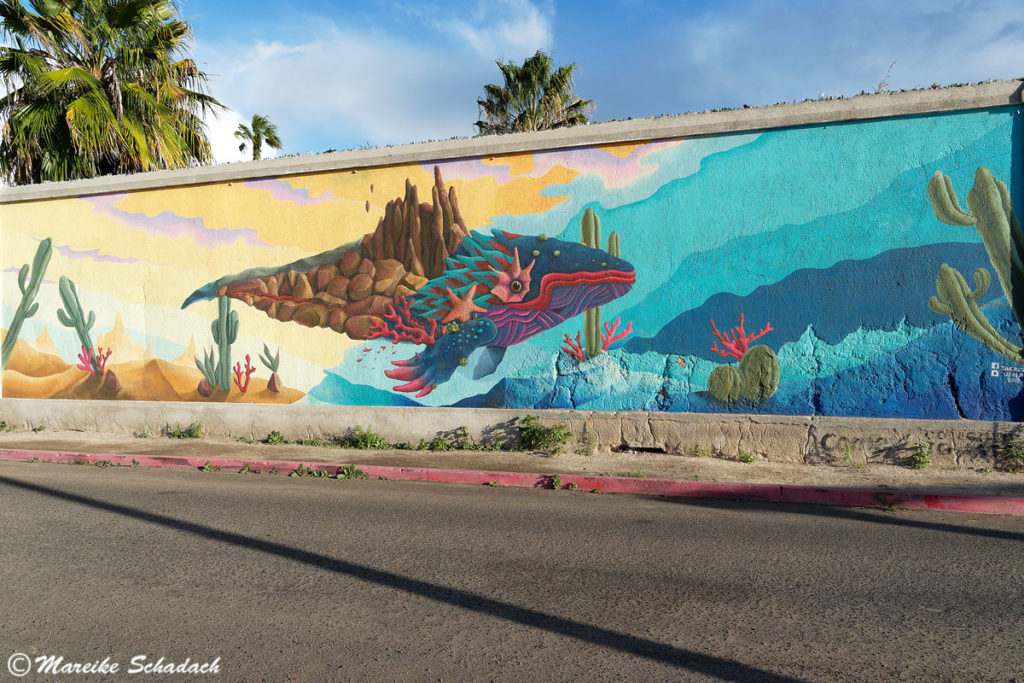 Street Art ist ein Highlight in La Paz