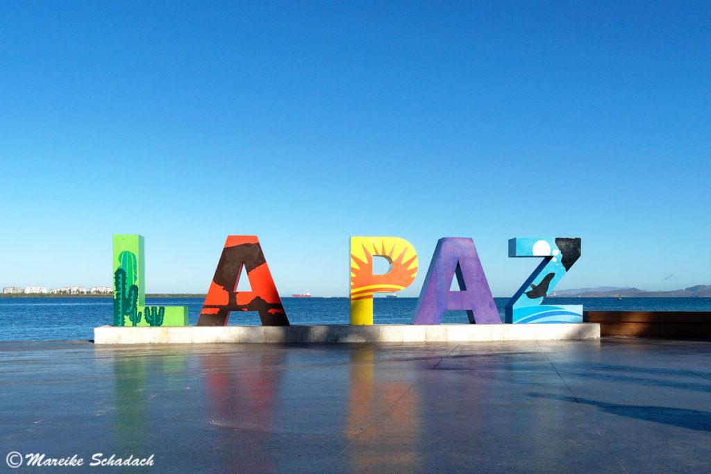 La Paz in Mexiko - 5 Highlights an der Baja California
