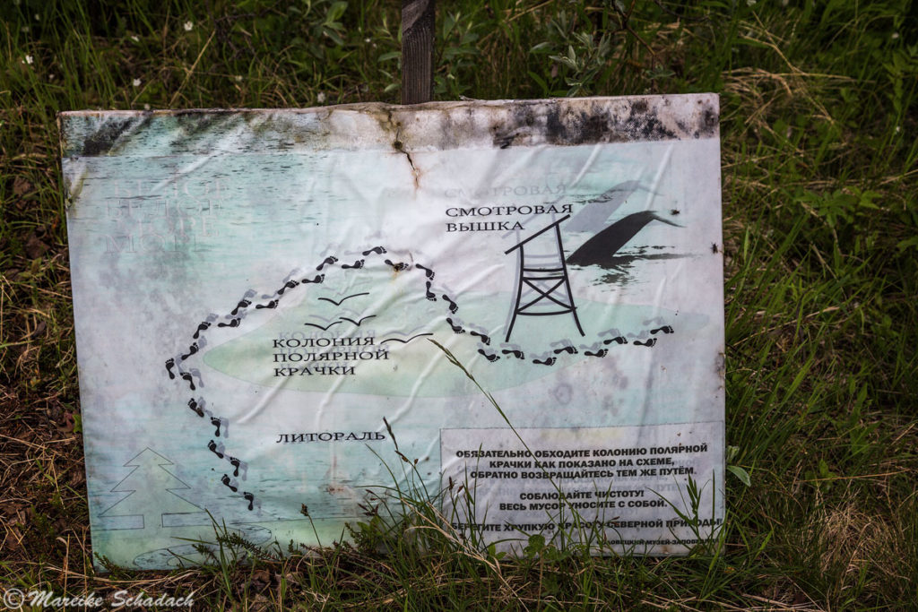 Wegskizze zum Beluga Kap durch das Watt, Groß-Solowezki, Russland