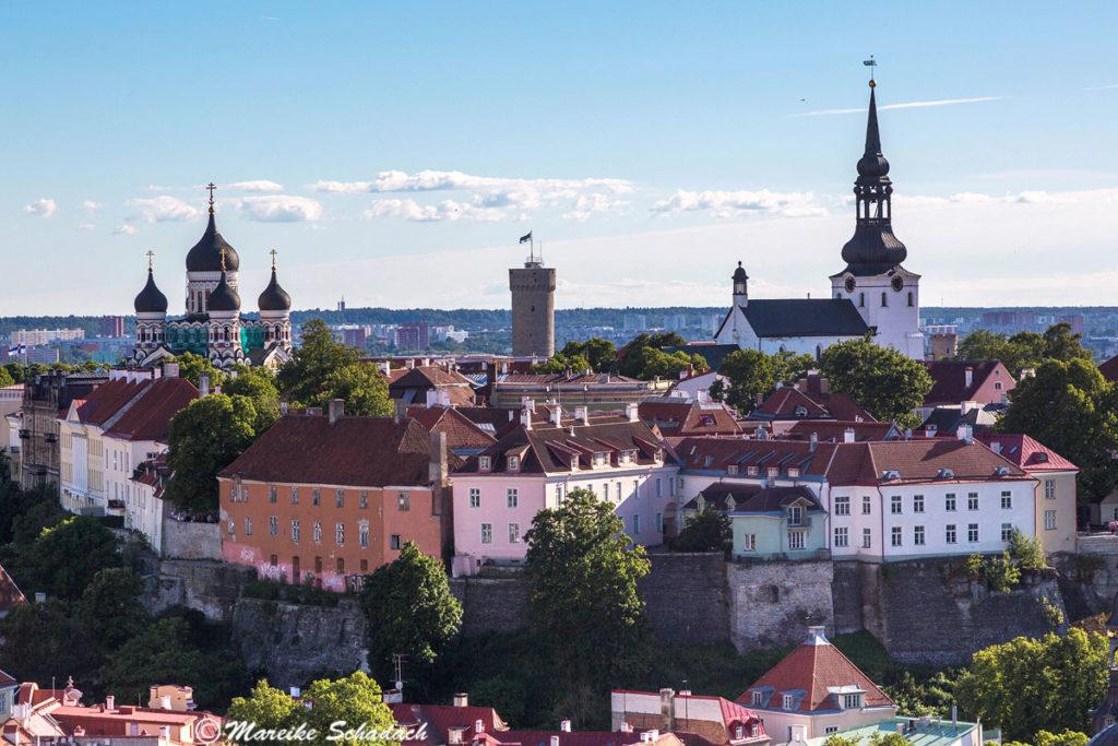 Der Blick auf die Altstadt von Tallinn von dem Turm der St. Olaikirche. Tallinn war ebenfalls eines der Highlights auf unserem Roadtrip Russland & Baltikum