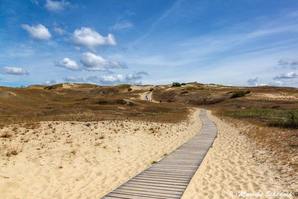 Die Grauen Dünen zählten ebenfalls zu den Highlights unseres Roadtrips im Baltikum.