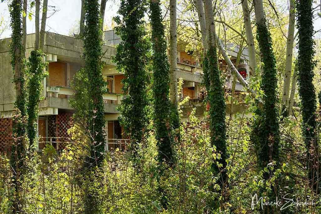 Der Garten der ehemaligen Irakischen Botschaft der DDR ist heute ein verwilderter und verlassener Ort in Berlin