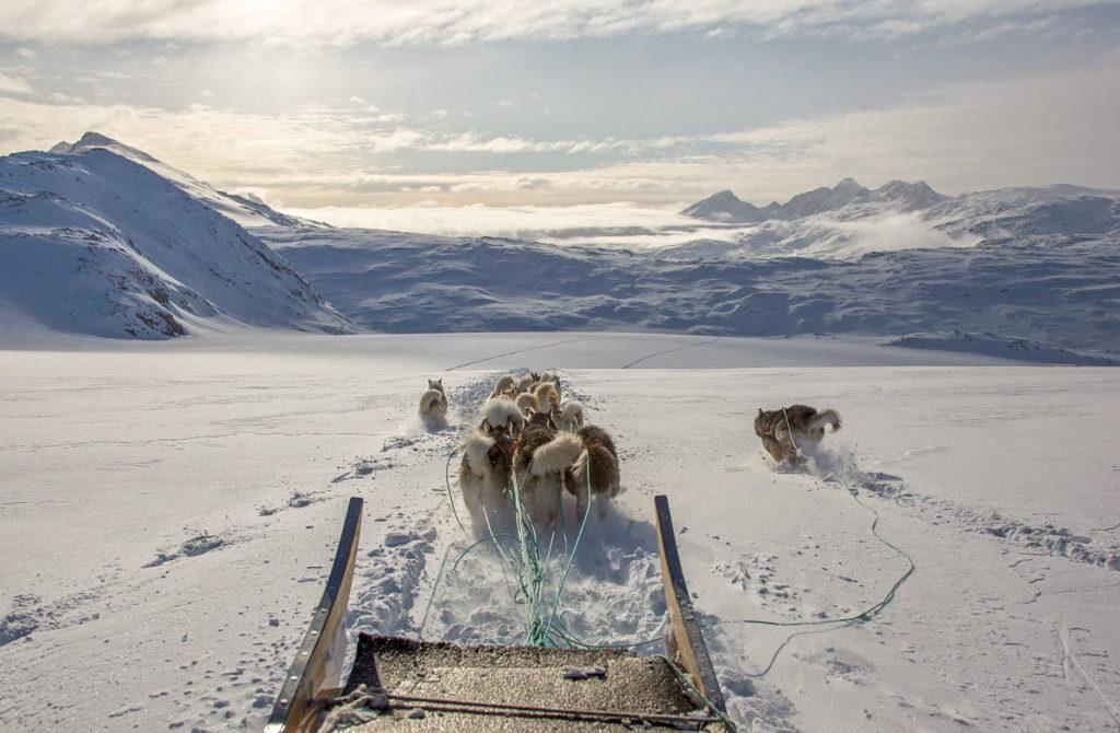 Mit Hundeschlitten von Tasiilaq nach Tiniteqilaaq - Ostgrönland - Grönland im Winter