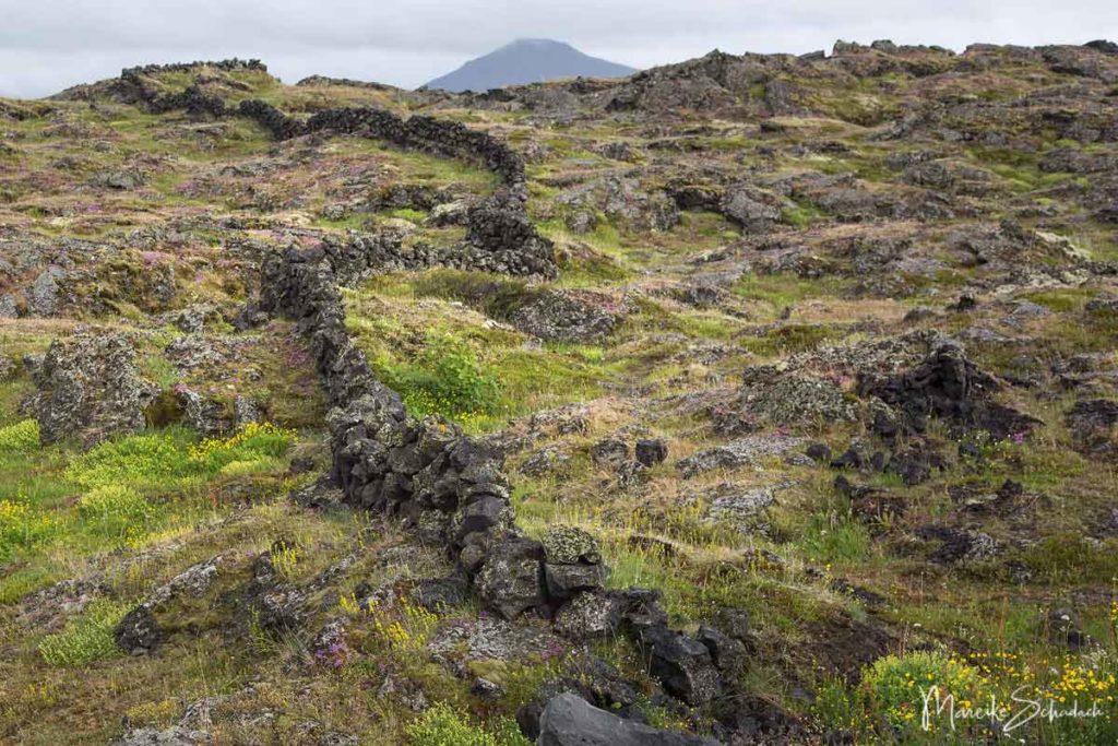 Lavalandschaft am Mývatn