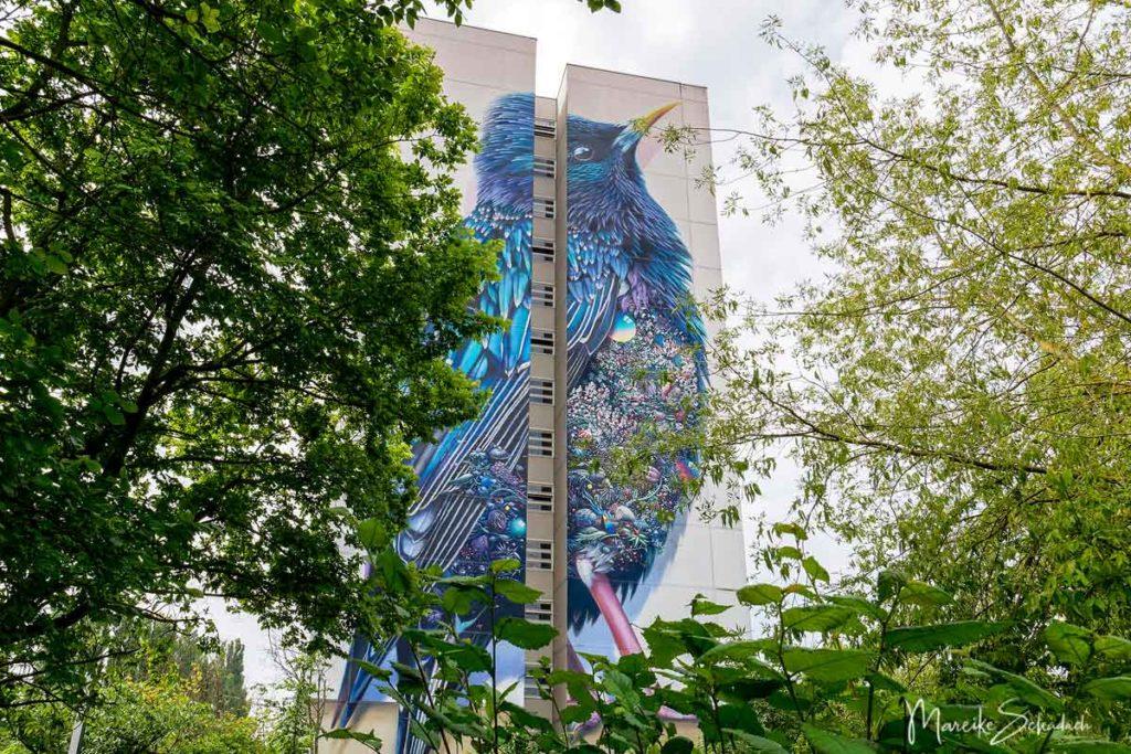 Art Park Tegel - die Graffiti-Hochhäuser von Berlin