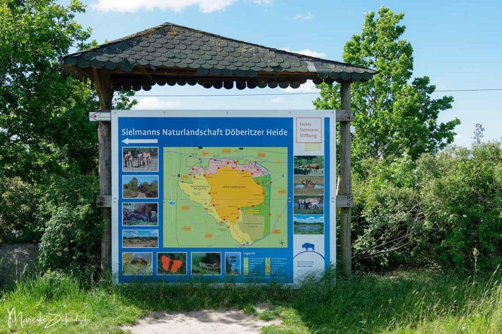 Ausflug Döberitzer Heide - Informationstafel mit Wanderwegen auf der Döberitzer Heide