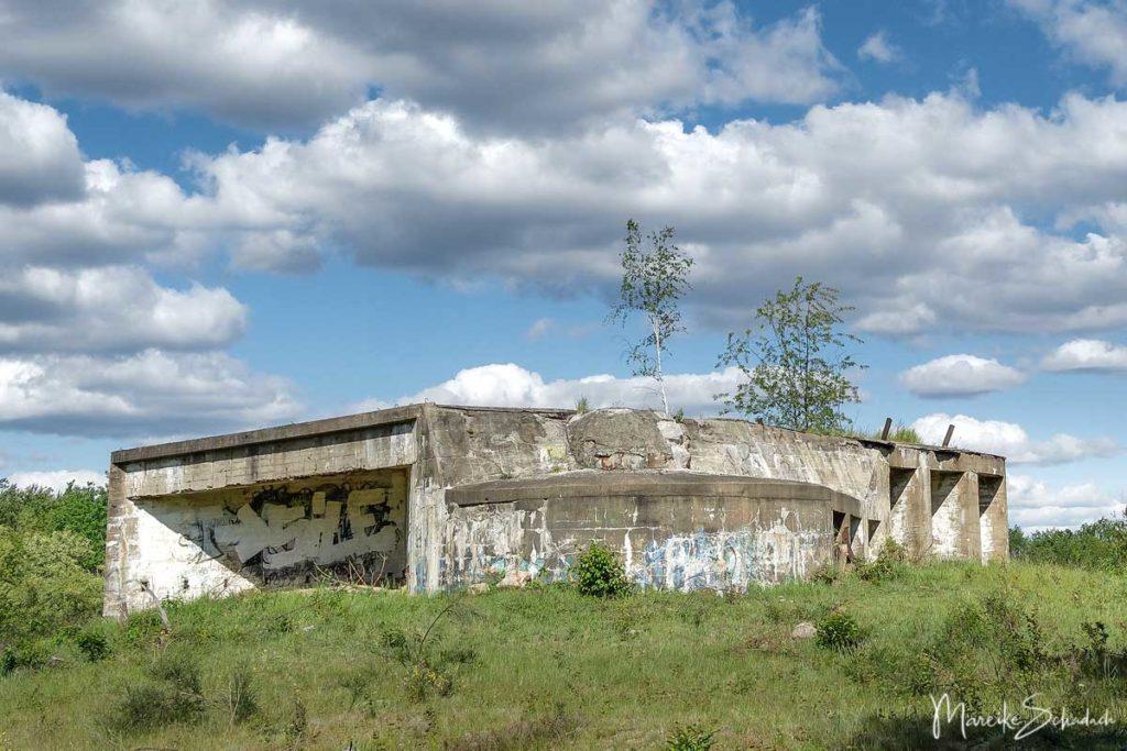 Ausflug Döberitzer Heide - Bunker auf dem ehemaligen Truppenübungsplatz