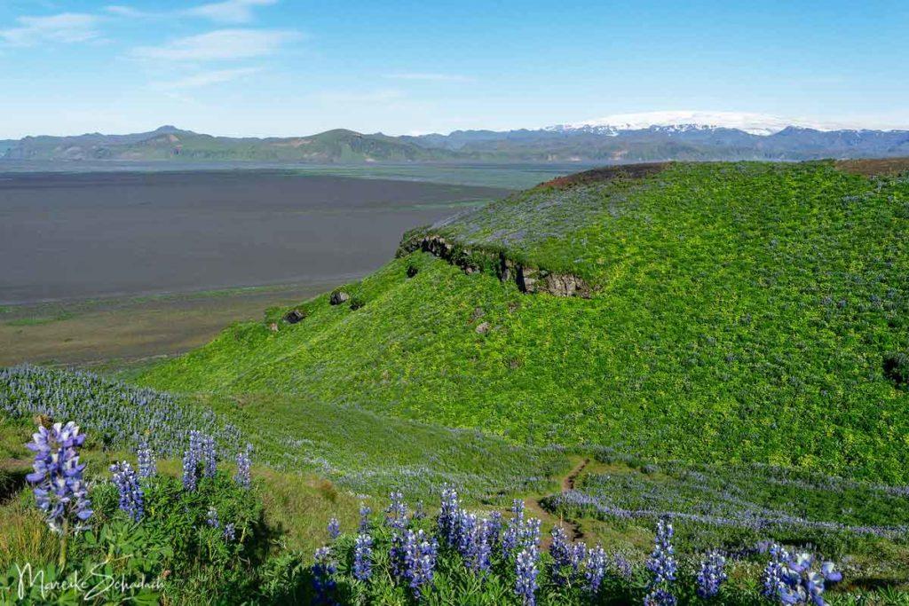 Hjörleifshöfði Island