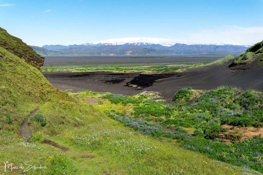 Blick vom Hjörleifshöfði Island