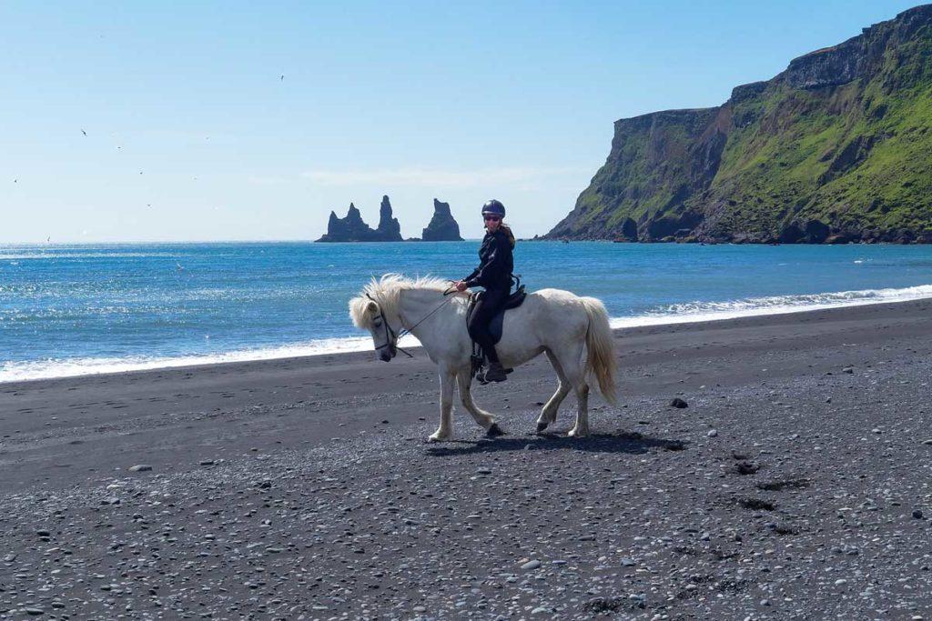 Islandpferd reiten auf Island