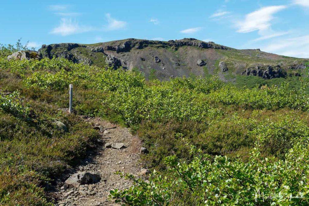 Pfad zum Múlagljúfur Canyon Island