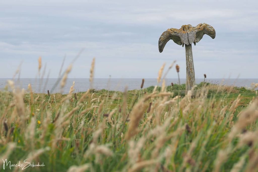 Rätselhafte Whalebone-Skulptur der Orkneys