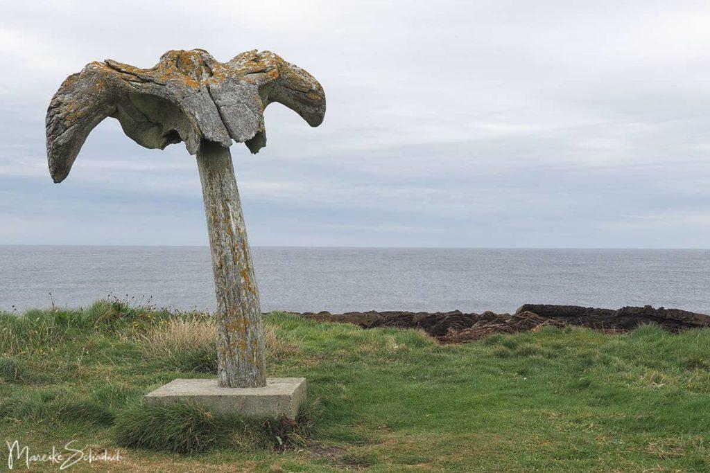 Whalebone an der Küste von Birsay - Orkneys