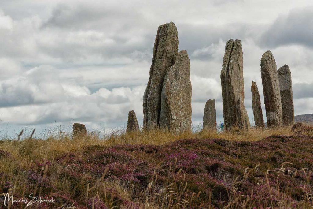 Sehenswerte Steinkreise auf einem Roadtrip über die Orkney Inseln