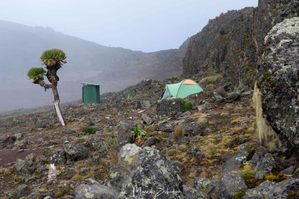 Mount Kenya - Chogoria-Sirimon Route zum Point Lenana - Camp Mintos
