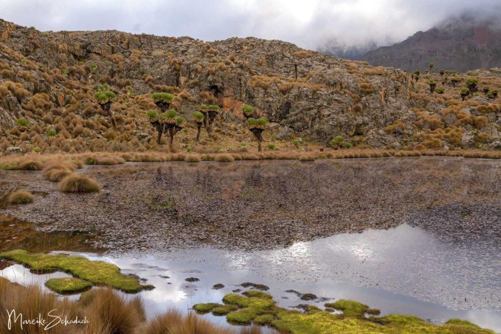 Mount Kenya Lenana - Kratersee am Mintos Camp
