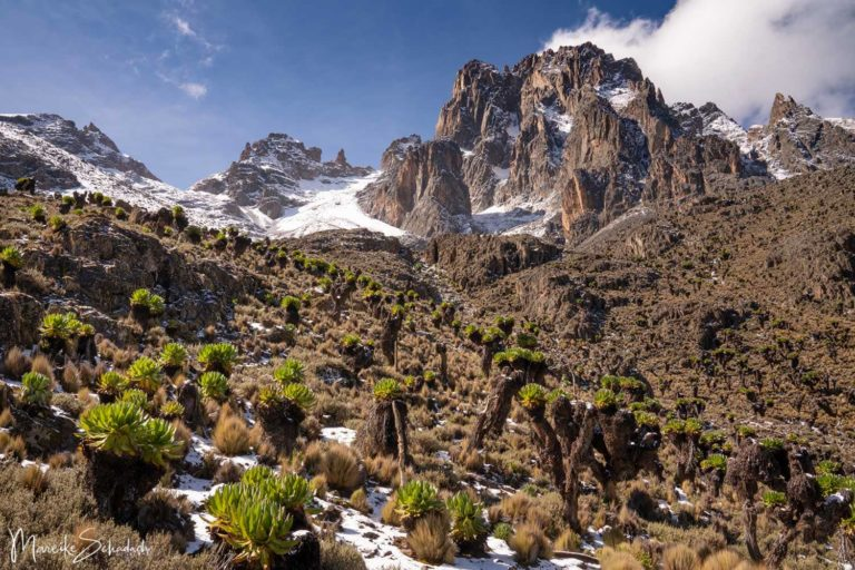 Mount Kenya – hoch hinaus auf den Point Lenana