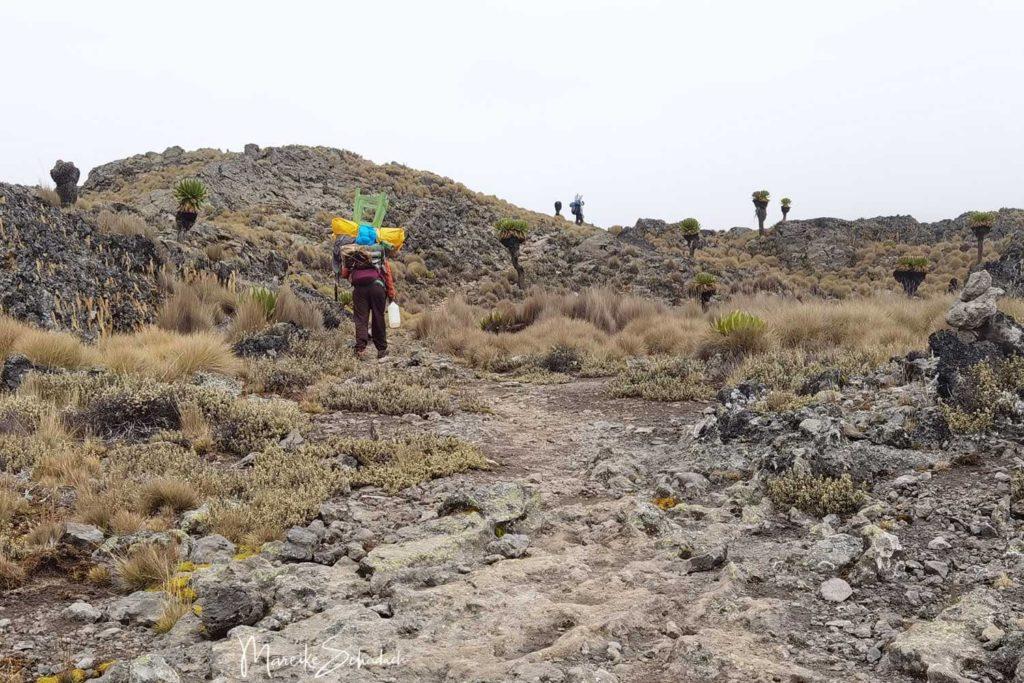Besteigung des Point Lenana, Mount Kenya