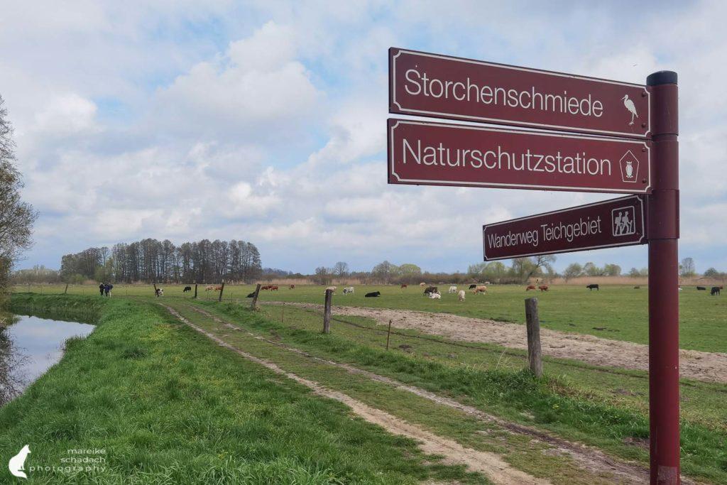 Wanderweg zum Birdwatching von Störchen und Kranichen rund ums Storchendorf Linum