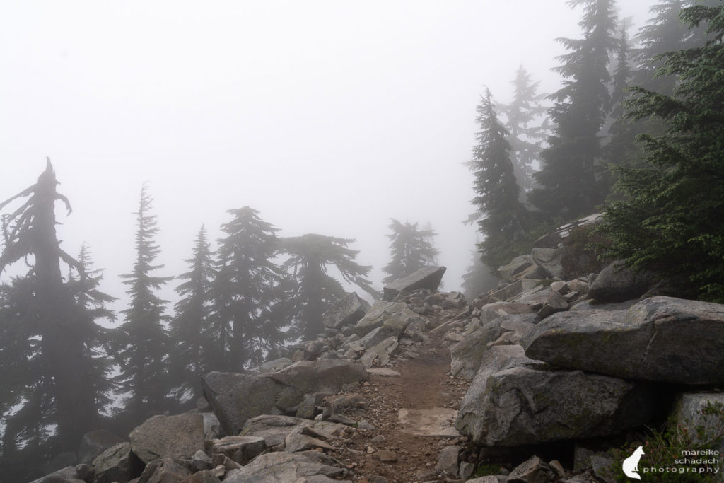 Hiking trail to Mount Pilchuck Fire Lookout