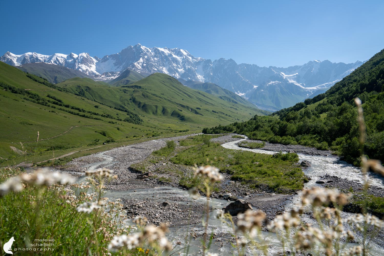 Mountains Ushguli Georgia - Hike to Schchara Glacier